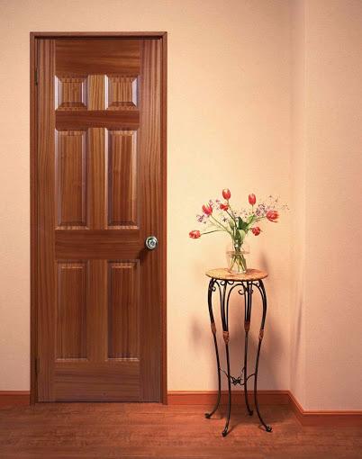 đặc điểm nổi bật nhất của cửa thép vân gỗ